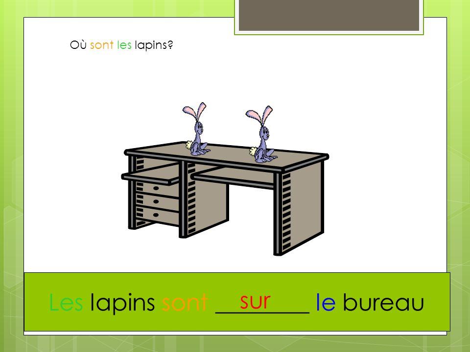 Les lapins sont ________ le bureau