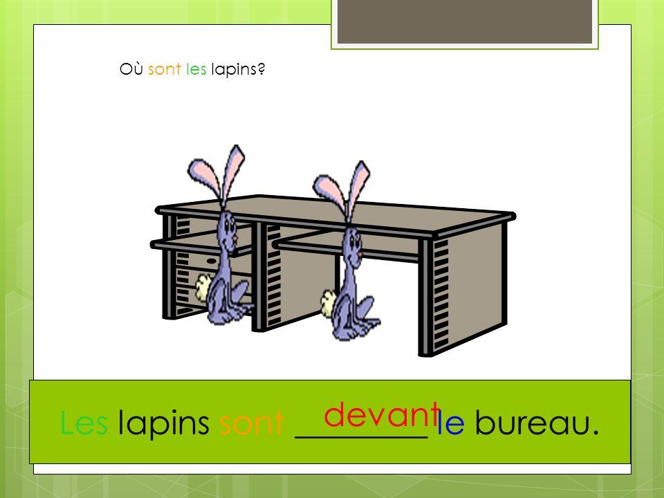 Les lapins sont ________ le bureau.