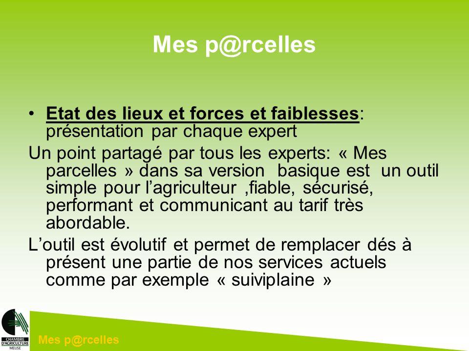 Mes p@rcelles Etat des lieux et forces et faiblesses: présentation par chaque expert.