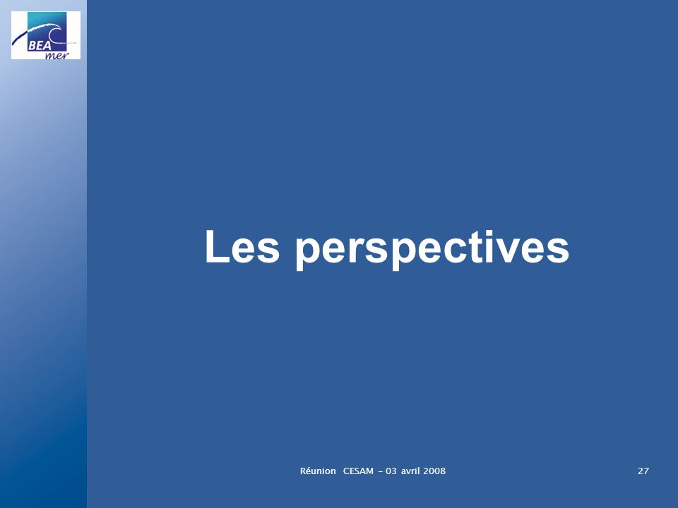 Les perspectives Réunion CESAM - 03 avril 2008