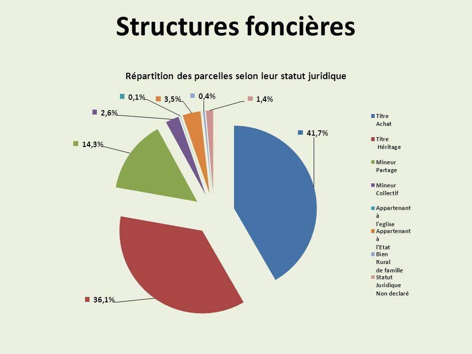 Répartition des parcelles selon leur statut juridique