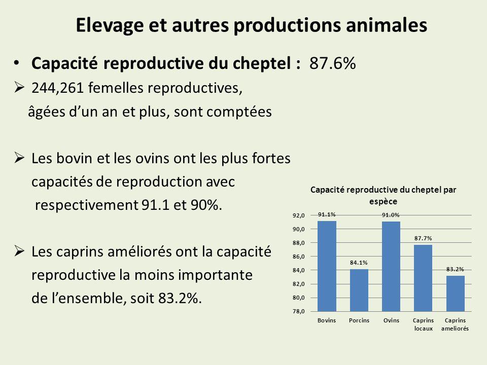 Elevage et autres productions animales