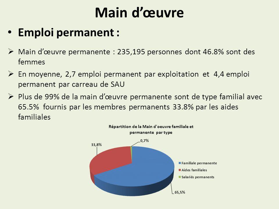 Main d'œuvre Emploi permanent :