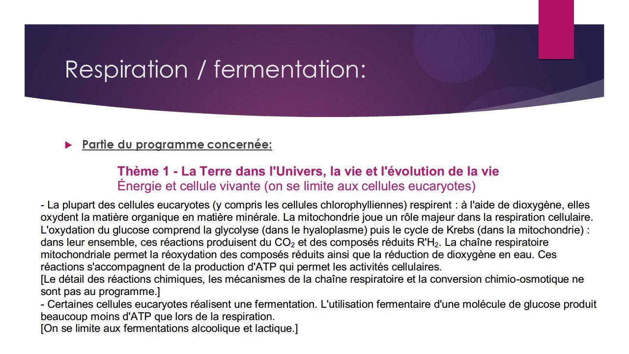 Respiration / fermentation: