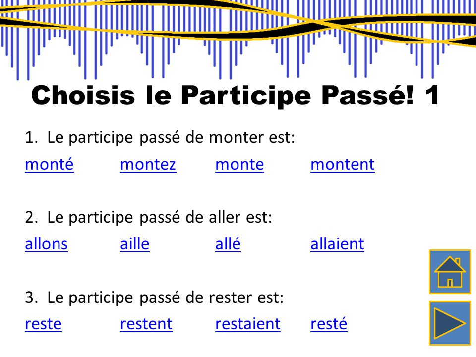 Choisis le Participe Passé! 1
