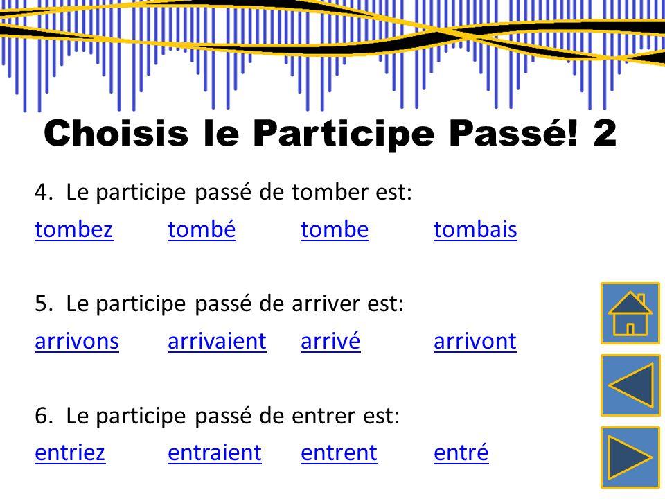 Choisis le Participe Passé! 2