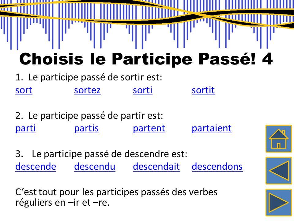 Choisis le Participe Passé! 4