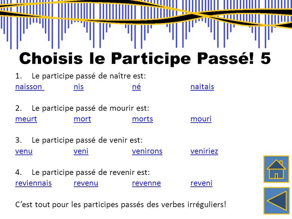 Choisis le Participe Passé! 5