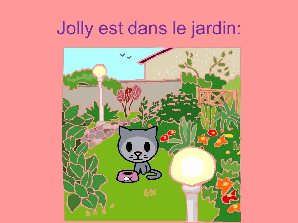 Jolly est dans le jardin: