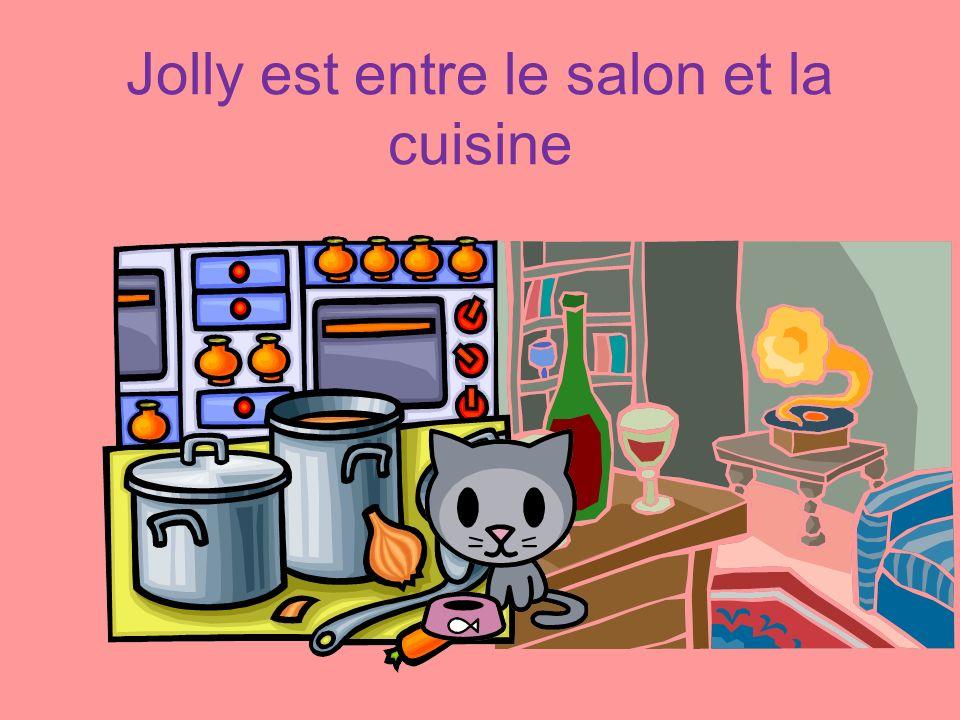Jolly est entre le salon et la cuisine