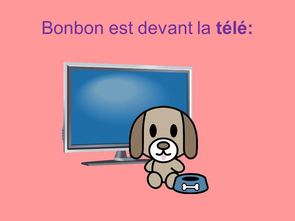 Bonbon est devant la télé: