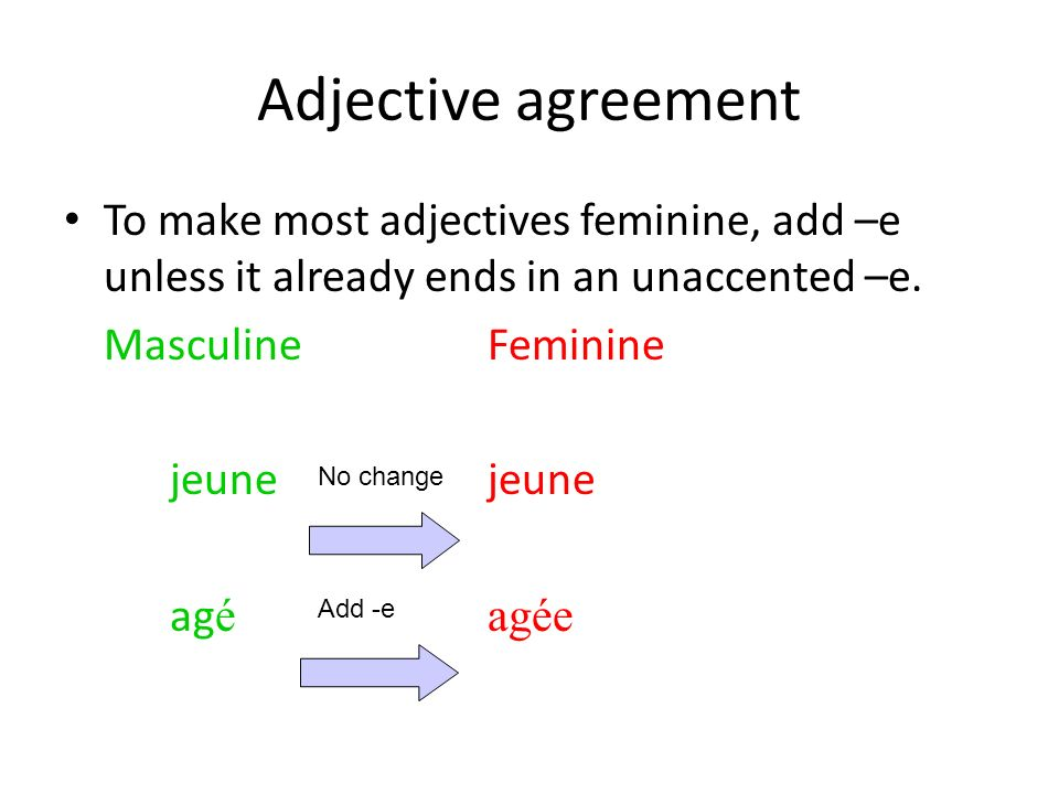 Adjective agreement To make most adjectives feminine, add –e unless it already ends in an unaccented –e.