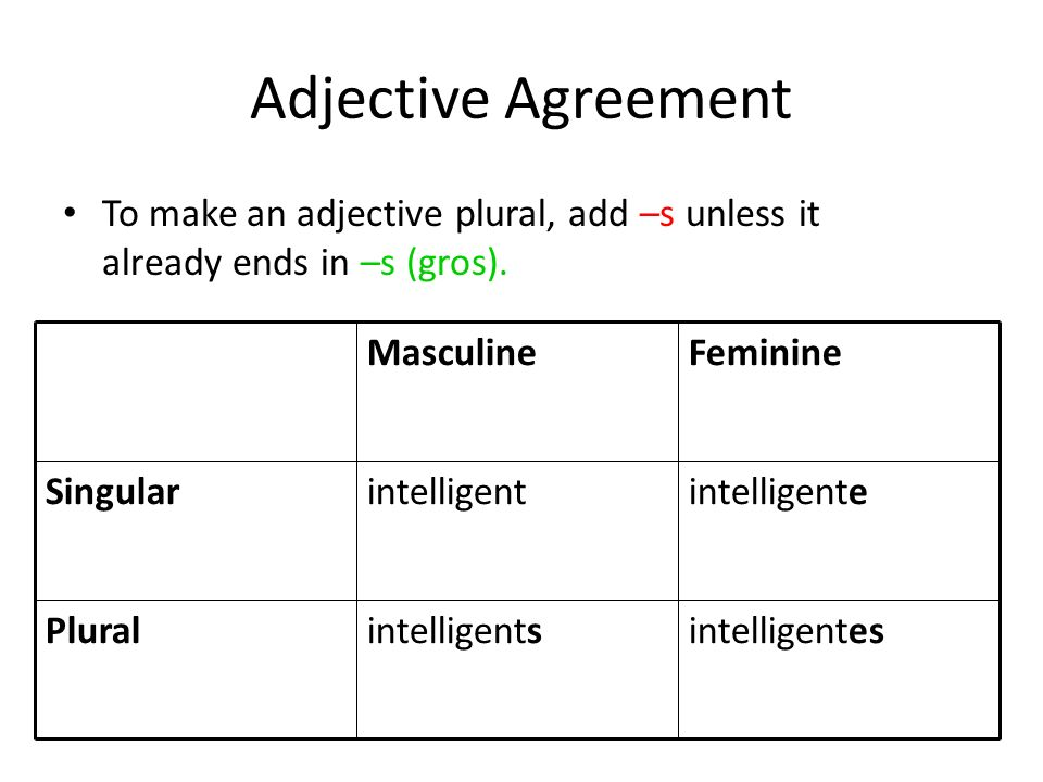 Adjective Agreement To make an adjective plural, add –s unless it already ends in –s (gros). intelligentes.