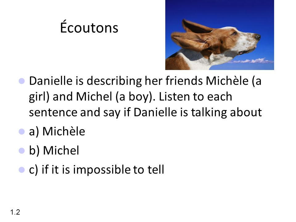 Écoutons Danielle is describing her friends Michèle (a girl) and Michel (a boy). Listen to each sentence and say if Danielle is talking about.