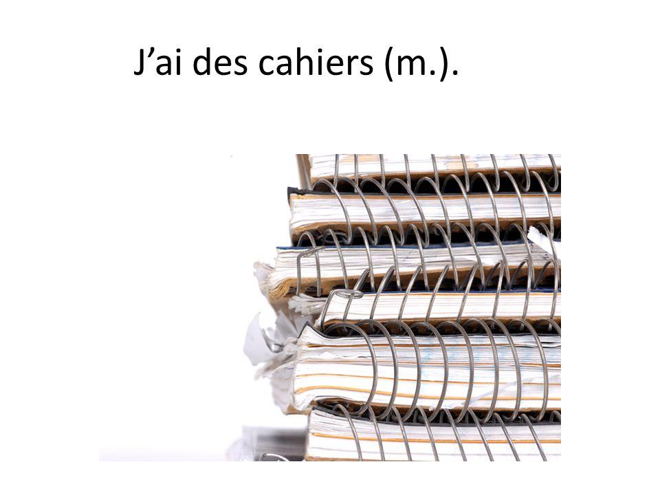 J'ai des cahiers (m.).