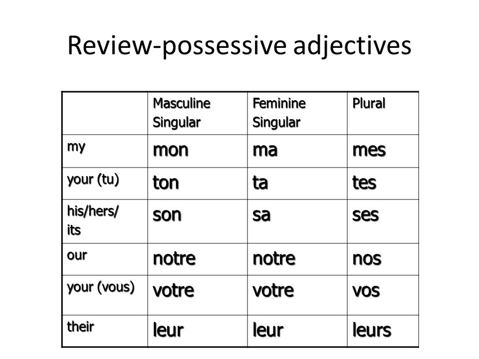 Review-possessive adjectives
