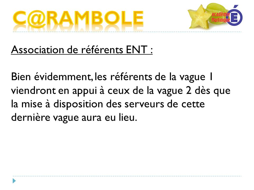 C@RAMBOLE Association de référents ENT :