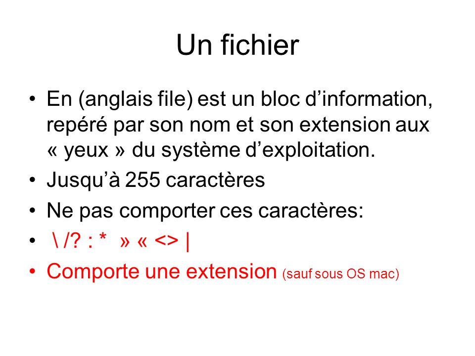 Un fichier En (anglais file) est un bloc d'information, repéré par son nom et son extension aux « yeux » du système d'exploitation.
