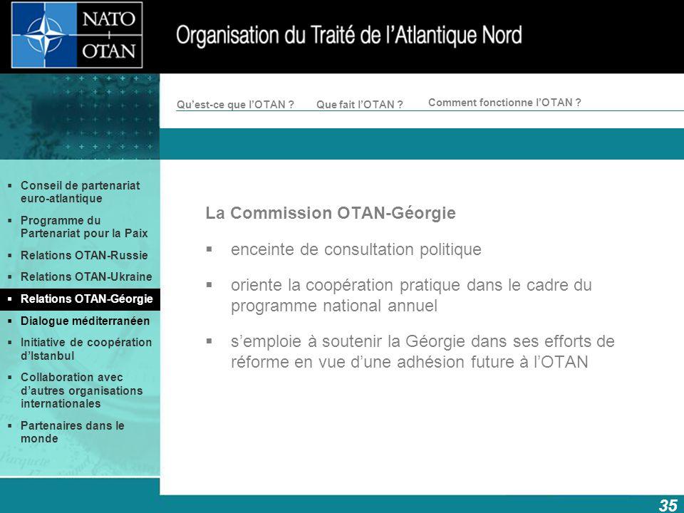 La Commission OTAN-Géorgie enceinte de consultation politique