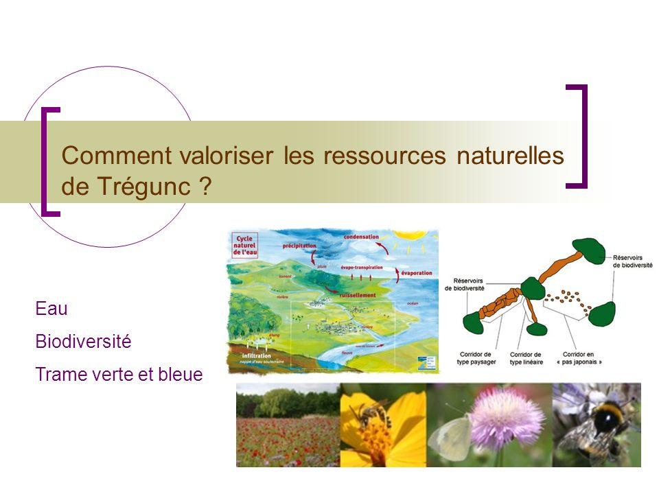 Comment valoriser les ressources naturelles de Trégunc