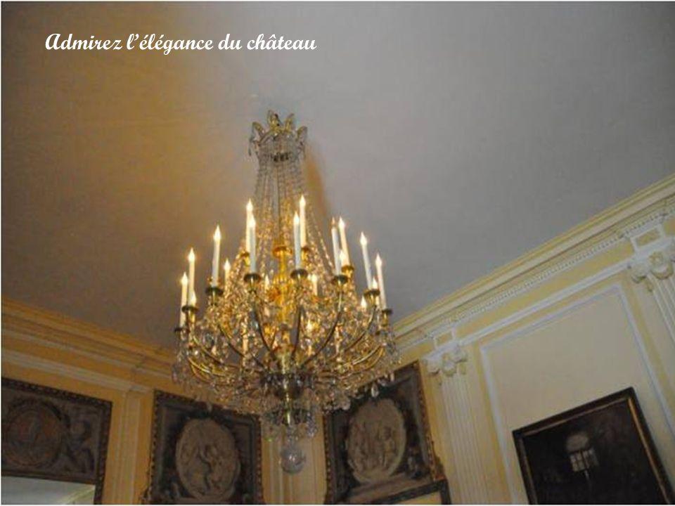 Admirez l'élégance du château