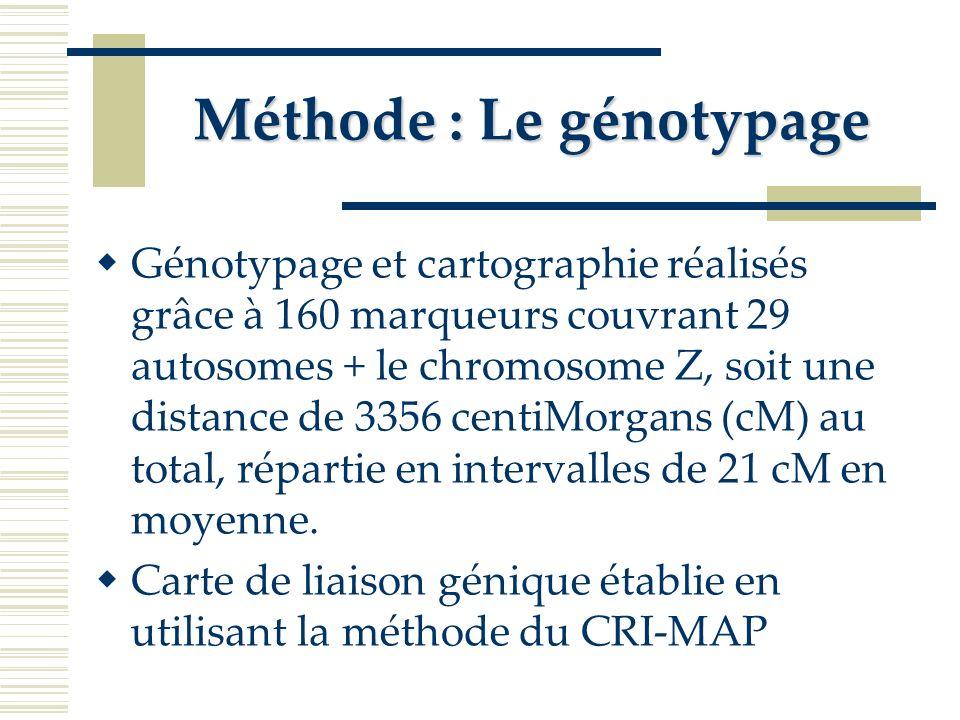 Méthode : Le génotypage