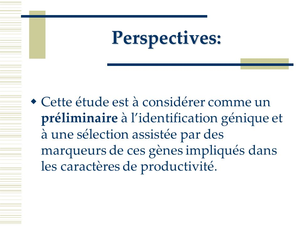 Perspectives: