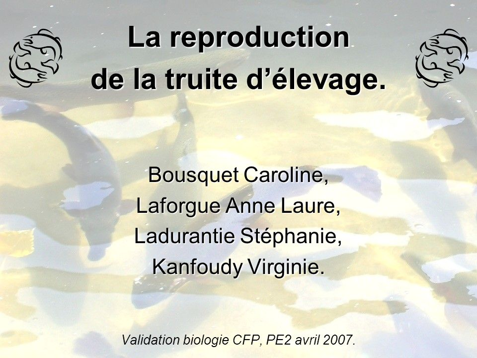 Validation biologie CFP, PE2 avril 2007.