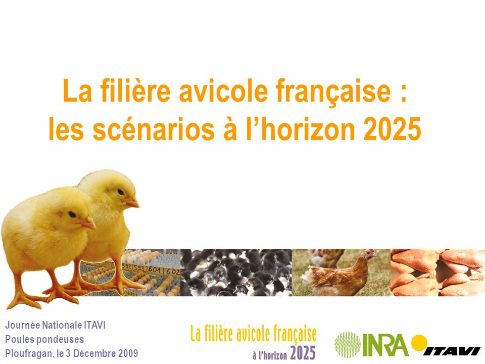 La filière avicole française : les scénarios à l'horizon 2025