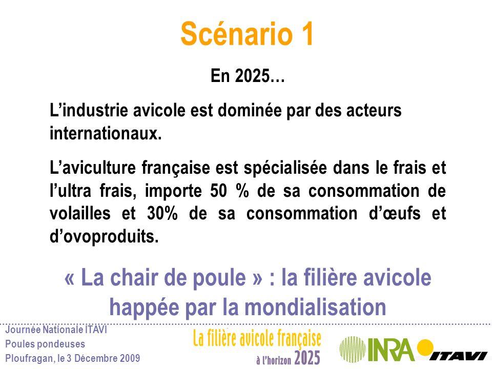 Scénario 1 En 2025… L'industrie avicole est dominée par des acteurs internationaux.