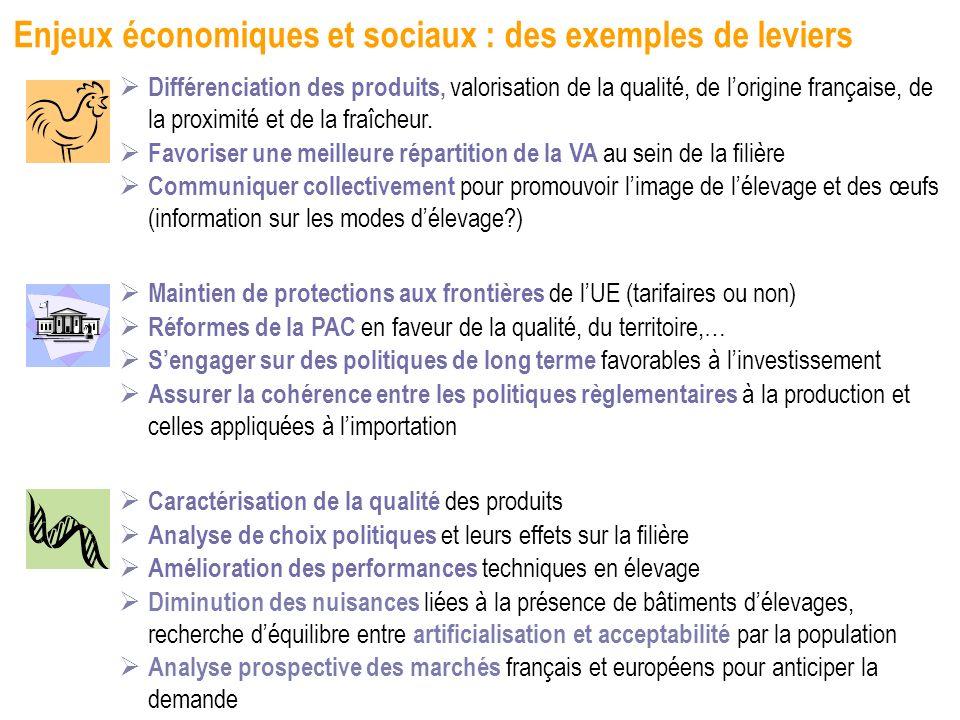 Enjeux économiques et sociaux : des exemples de leviers