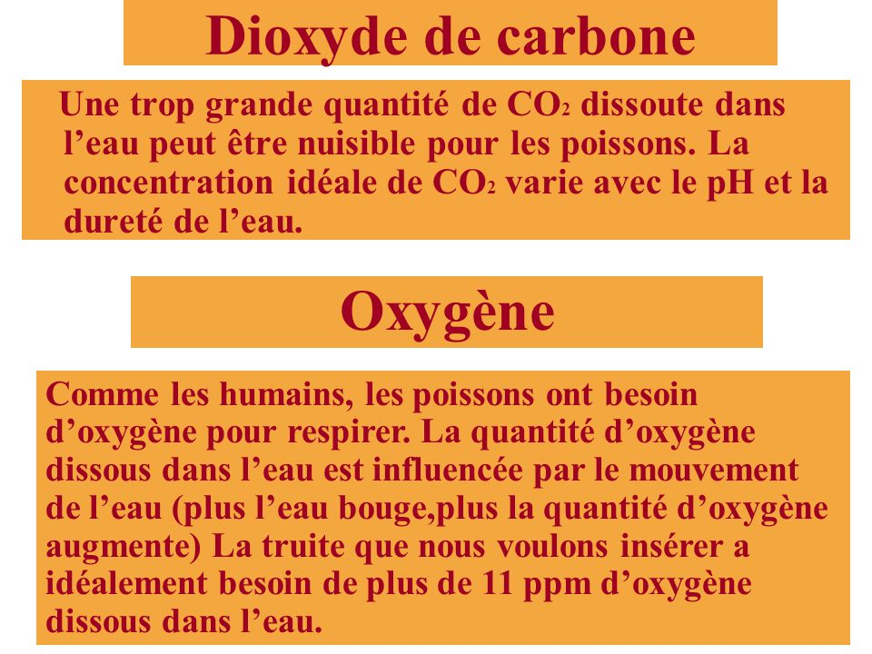 Dioxyde de carbone Oxygène