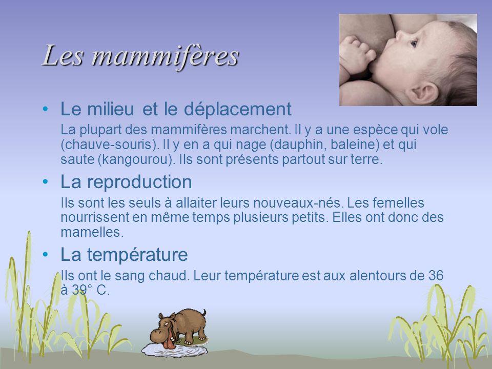 Les mammifères Le milieu et le déplacement La reproduction