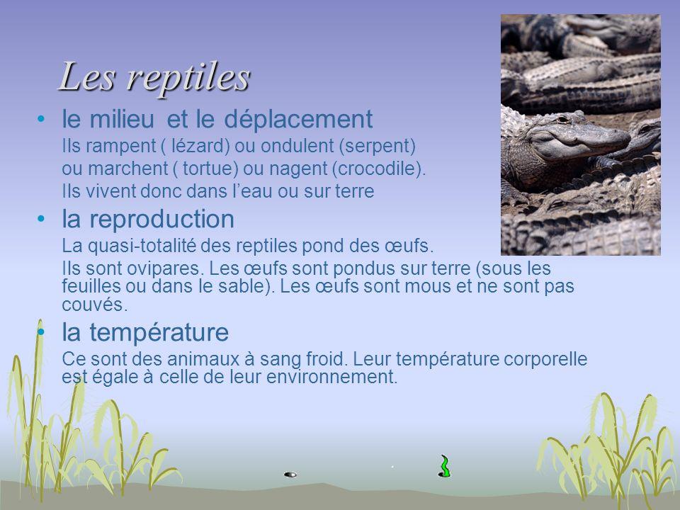 Les reptiles le milieu et le déplacement la reproduction