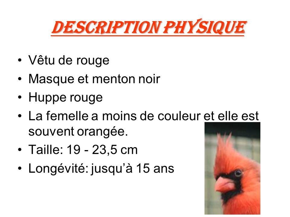 Description physique Vêtu de rouge Masque et menton noir Huppe rouge