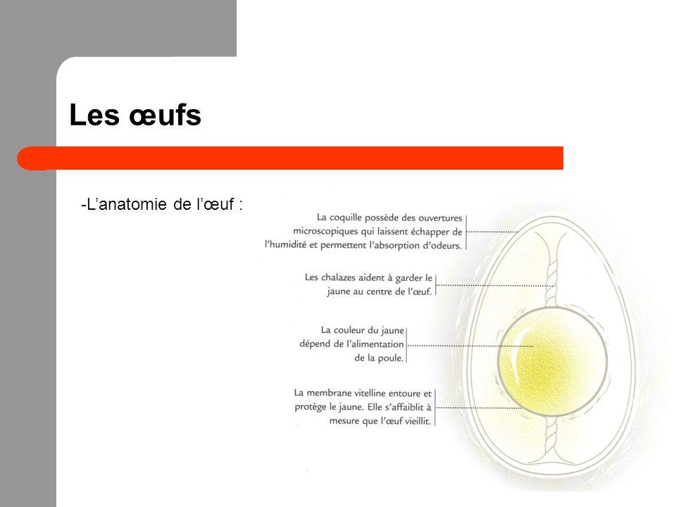 Les œufs L'anatomie de l'œuf :