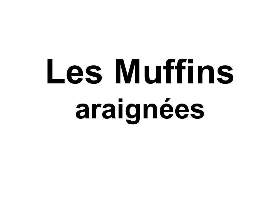 Les Muffins araignées