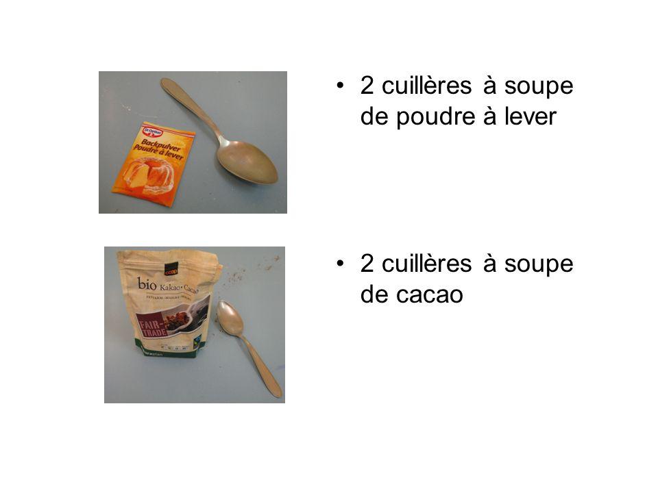 2 cuillères à soupe de poudre à lever