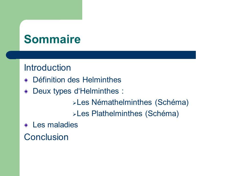 Sommaire Introduction Conclusion Définition des Helminthes