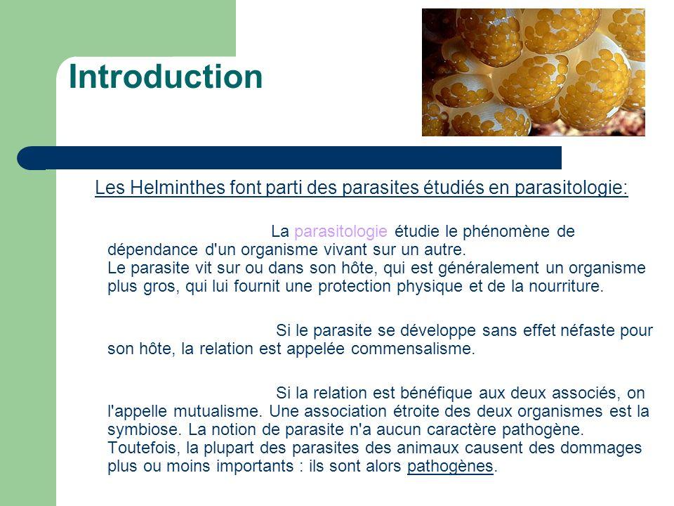 Les Helminthes font parti des parasites étudiés en parasitologie:
