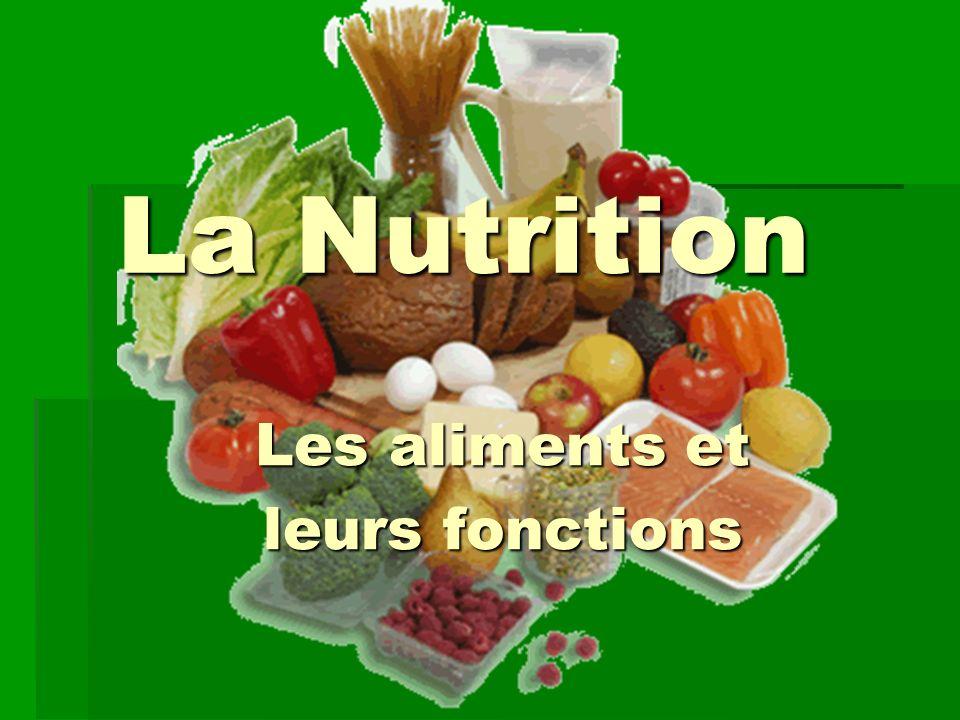 Les aliments et leurs fonctions