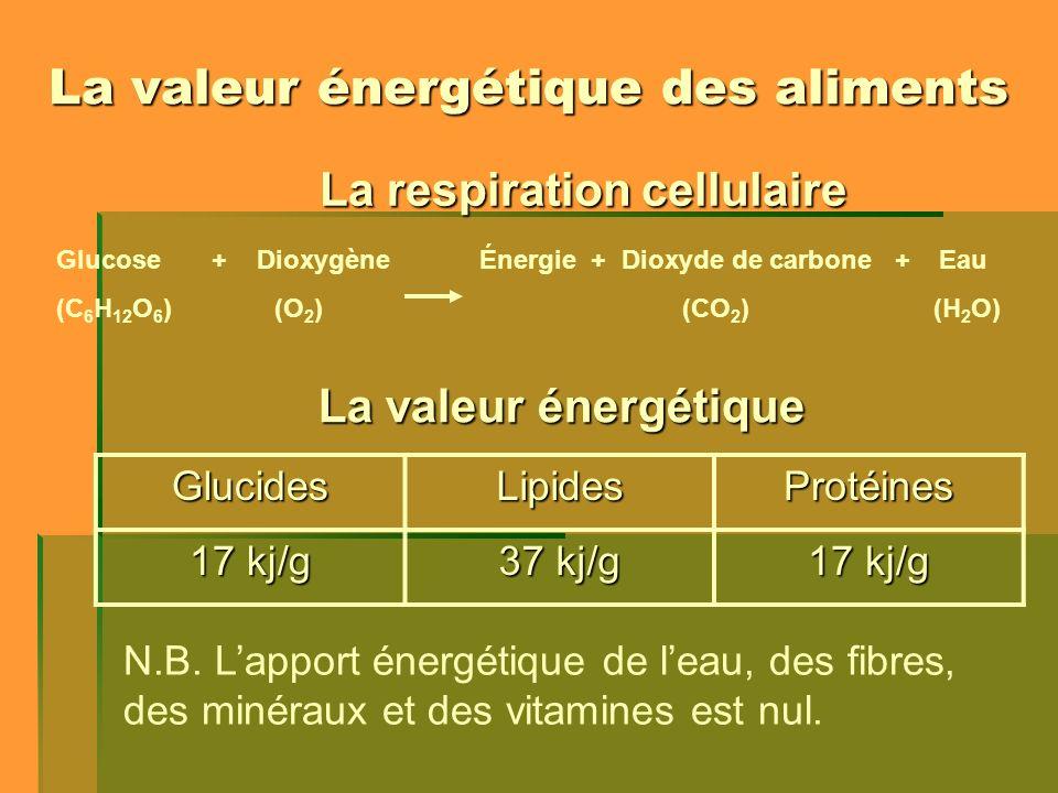 La valeur énergétique des aliments