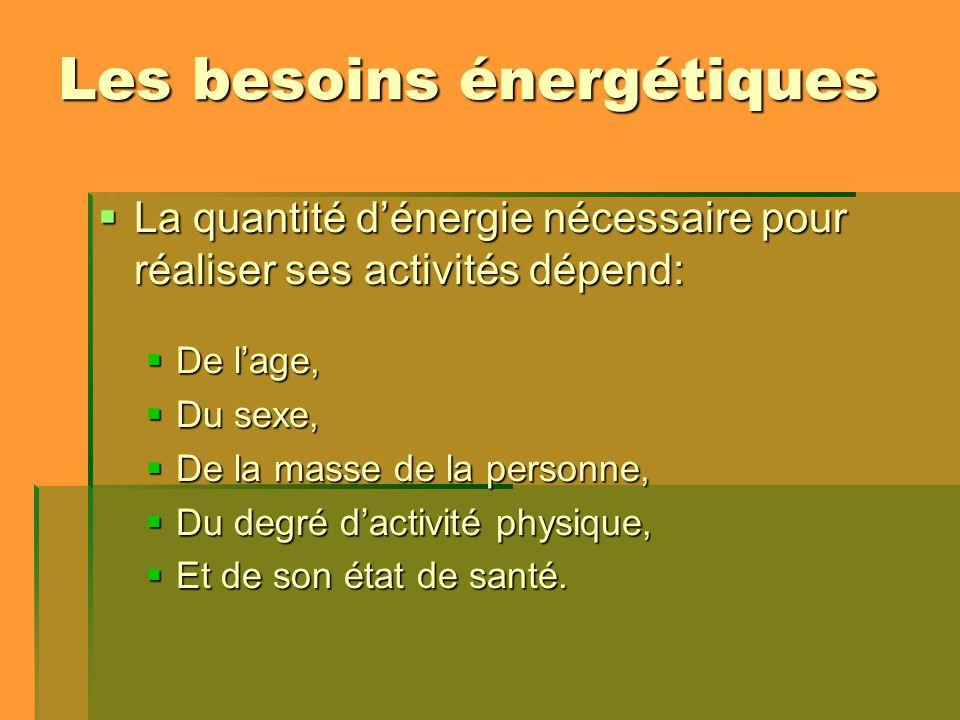 Les besoins énergétiques