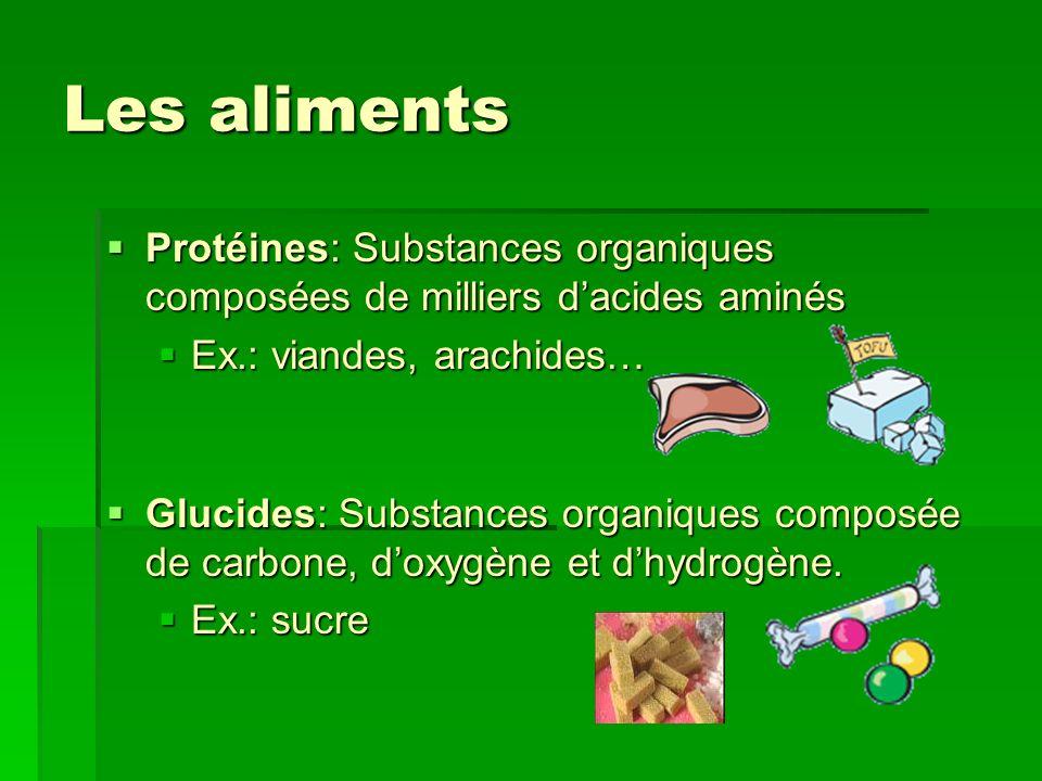 Les aliments Protéines: Substances organiques composées de milliers d'acides aminés. Ex.: viandes, arachides…