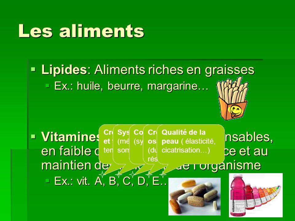 Les aliments Lipides: Aliments riches en graisses