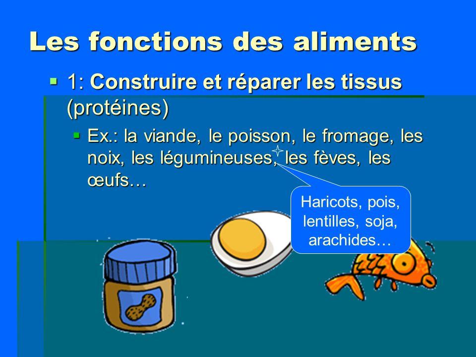 Les fonctions des aliments