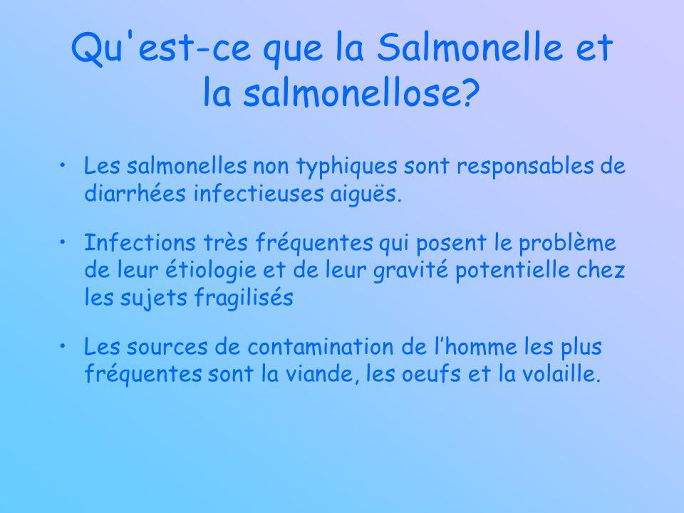 Qu est-ce que la Salmonelle et la salmonellose