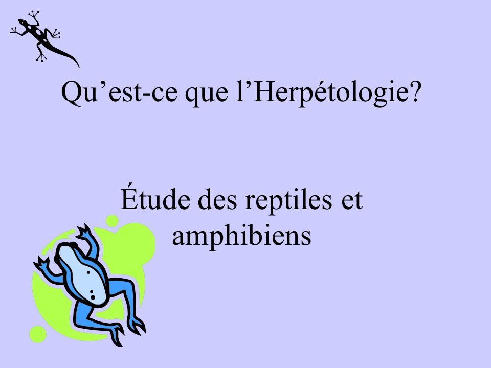 Qu'est-ce que l'Herpétologie