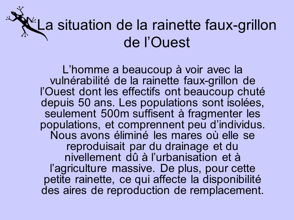 La situation de la rainette faux-grillon de l'Ouest
