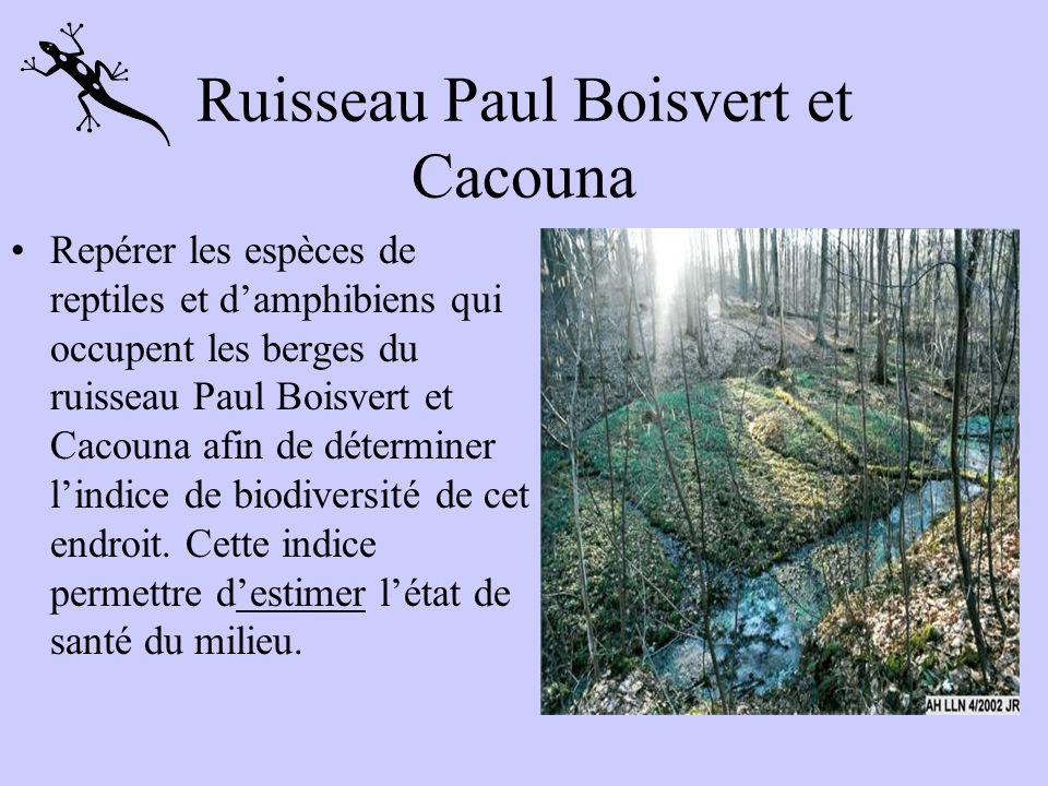 Ruisseau Paul Boisvert et Cacouna